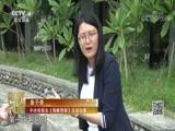 """[海峡两岸]台湾过端午:高山""""阿拜""""传祝福"""