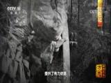 《中国影像方志》 第78集 四川纳溪篇 00:39:18