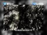 """深山""""天眼""""国之重器 南仁东 两岸秘密档案 2018.06.28 - 厦门卫视 00:41:01"""