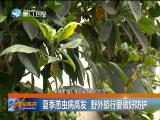 新闻斗阵讲 2018.7.5 - 厦门卫视 00:24:47