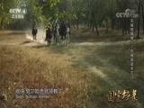 [国宝档案]京师保卫战