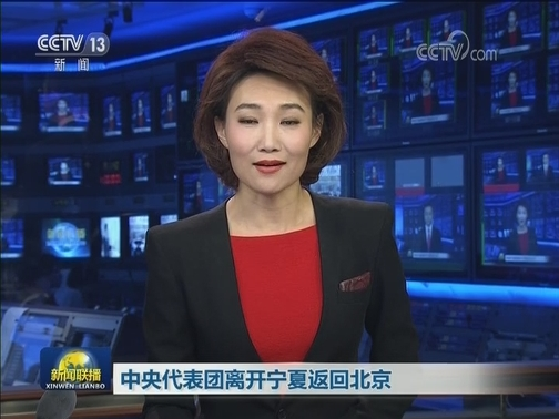 [视频]中央代表团离开宁夏返回北京