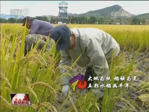 [视频]秋收中国