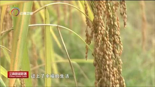 《云南新闻联播》 20180924