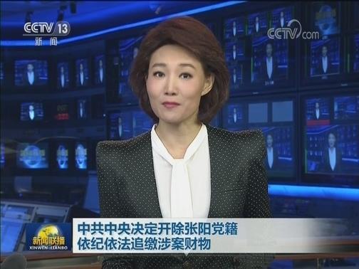 [视频]中共中央决定开除张阳党籍 依纪依法追缴涉案财物