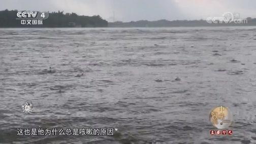 """散寒解表话""""哮喘"""" 中华医药 2018.10.20 - 中央电视台 00:40:56"""