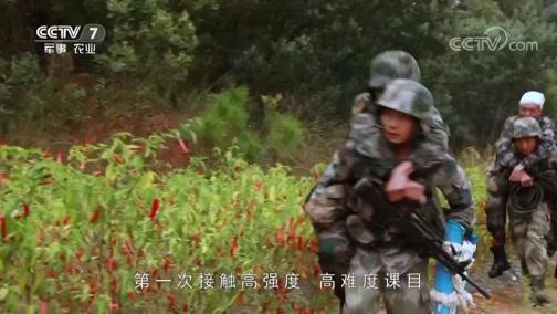 《军事纪实》 20181105 侦察营特训记