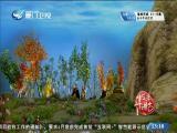 平辽王(15)斗阵来讲古 2019.01.04 - 厦门卫视 00:30:18