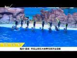 炫彩生活(美食汽车版) 2019.01.05 - 厦门电视台 00:13:47