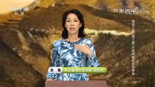 [百家讲坛]镇馆之宝(第三季) 21 跪拜俑背后的隐秘 唐代皇陵的特点
