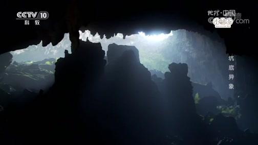 《地理中国》天坑奇观·坑底异象 00:24:02