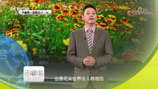 《地理中国》奇趣自然·生存利器(上) 00:23:43