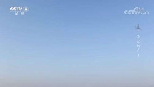 《海盐传奇》夙沙氏煮海为盐 双王城盐业遗址
