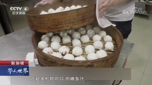 新加坡:姐弟传承叉烧包手艺 华人世界 2019.04.04 - 中央电视台 00:02:11