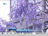 特区新闻广场 2019.05.07 - 厦门电视台 00:24:16