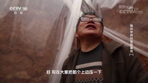 《探索发现》 20190521 2019考古进行时 第二季 随州枣树林曾国墓地(一)