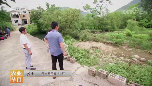 《乡土》 20190612 龙潭古镇的节日