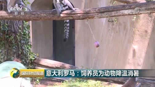 [国际财经报道]意大年夜利罗马:豢养员为动物降温消暑