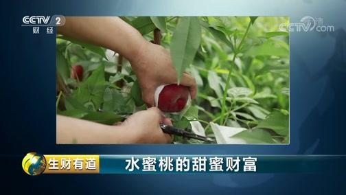 《生财有道》 20190717 夏日经济系列 水蜜桃的甜蜜财富