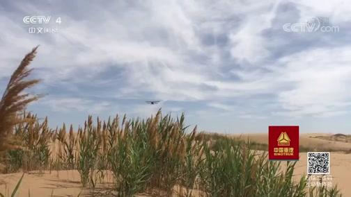 《走遍中国》 20190719 专题片《沙漠方舟》(下) 绿色屏障