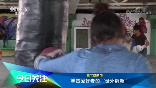 """[拳击]桥下拳击馆 拳击爱好者的""""世外桃源"""""""