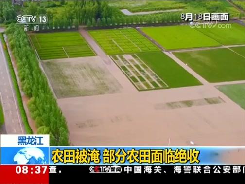 [朝闻天下]黑龙江 农田被淹 部分农田面临绝收
