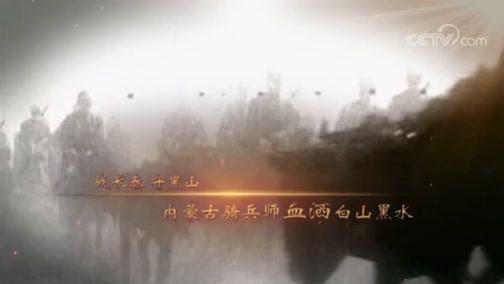 《国家记忆》8月20日播出:军魂永驻——骑兵(下)