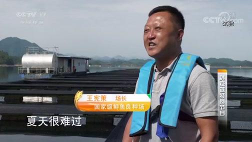 """《科技链》 20190822 """"水中活化石""""的新生"""