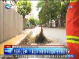 XM两岸新新闻_两岸新新闻 2019.08.25 - 厦门卫视 00:29:06