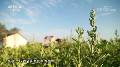 [中华医药]芳香疗法帮助患者改善睡眠