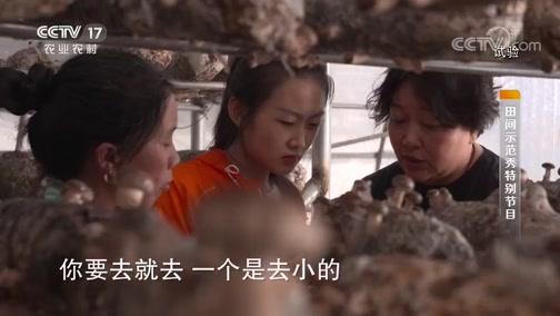 《田间示范秀》 20190901 精准补水香菇好