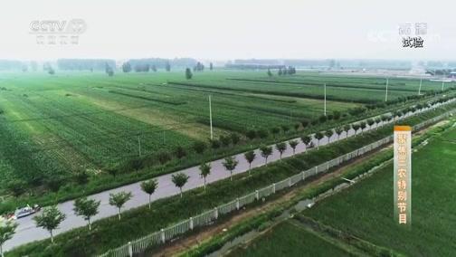 《聚焦三农》 20190905 无人机植保行业有待规范