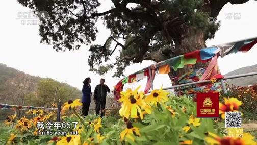 《走遍中国》 20190911 3集系列片《森林之城》(3) 绿满黄土坡