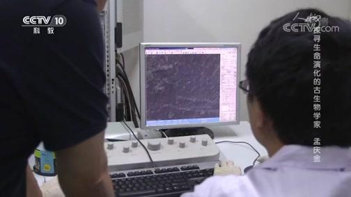 《人物》 20190913 探寻生命演化的古生物学家 孟庆金