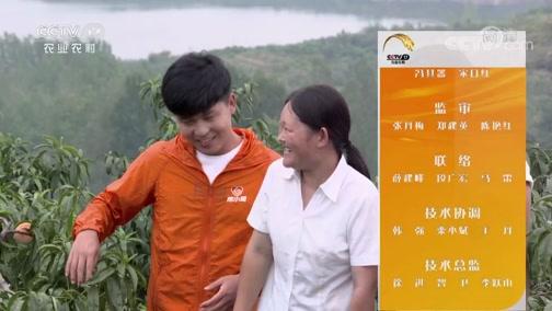 《田间示范秀》 20190924 拯救大山里的水蜜桃