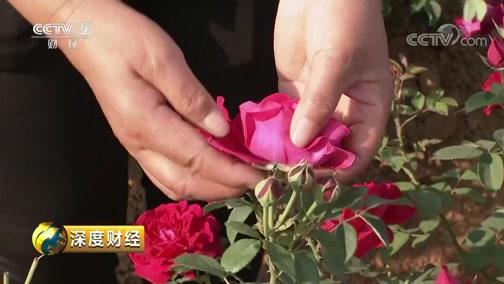 [深度财经]从鲜花酒到玫瑰皂 鲜花用途广泛 大自然就是最珍贵的宝物