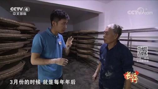 《远方的家》 20191004 长江行(41) 从赤水河到龙溪河