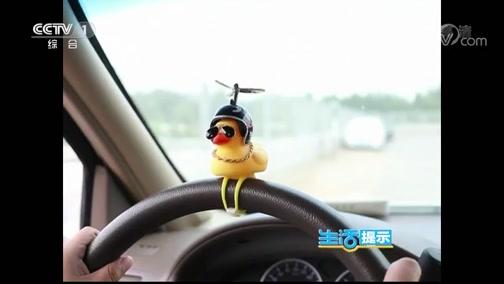 《生活提示》 20191012 车装小黄鸭 危险又违法