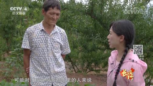 [远方的家]长江行(48) 小青果能量大 巫山脆李行天下