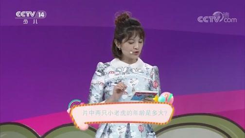 《智力快车》 20191022 彩虹大作战