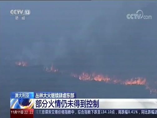[国际时讯]澳大利亚 丛林大火继续肆虐东部