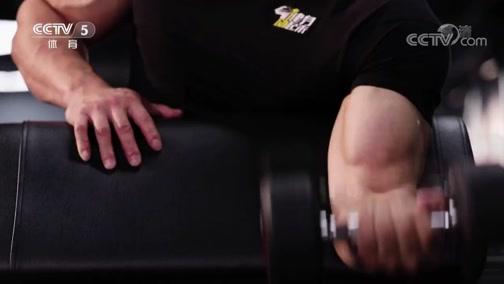 [健身动起来]吴龙带来手臂训练-哑铃交替弯举
