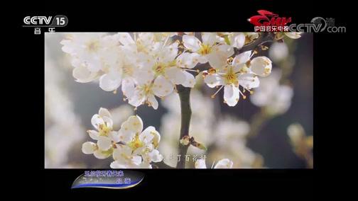 [中国音乐电视]歌曲《玉兰花开春天来》 演唱:吕薇