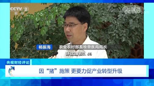 """《央视财经评论》 20191117 因""""猪""""施策 更要力促产业转型升级"""
