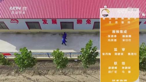 """《田间示范秀》 20191121 住""""别墅""""的小獭兔"""