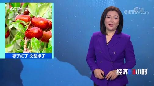 《经济半小时》 20191125 枣子红了 戈壁绿了
