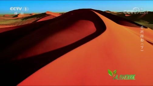 《人与自然》 20200105 非洲掠影(下)