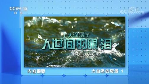 《地理·中国》 20200210 大自然的奇景 1