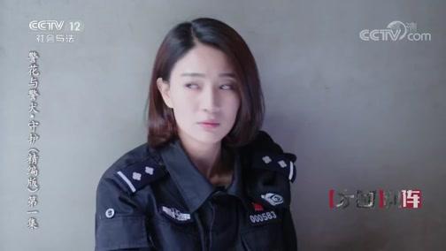 《方圆剧阵》 20200215 警花与警犬·守护(精编版)第一集