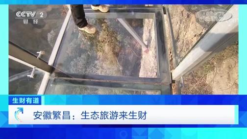 《生财有道》 20200226 安徽繁昌:生态旅游来生财